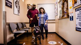 Orange County Animal Services 'billboard dog' gets new fur-ever home