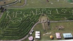 'RIP Gabby': Bradenton farm creates corn maze tribute to Gabby Petito