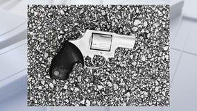 FOX 35 helps find owner of gun found at school bus stop