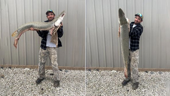 Alligator gar caught in Kansas for the first time ever