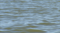 Kayaker's body recovered after couple capsizes in Lake Ray Hubbard
