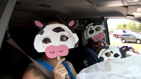 You can get a free Chick-fil-A entree if you dress like a cow on 'Cow Appreciation Day'