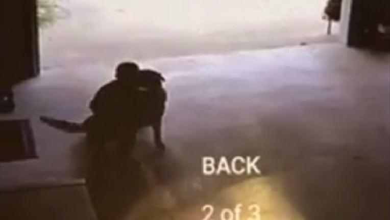 5ce0d31f-Boy Hugs Dog 1_1465408133661-401096.jpg