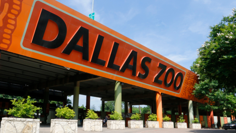 6c366a1c-Dallas Zoo sign_1504054314248.png