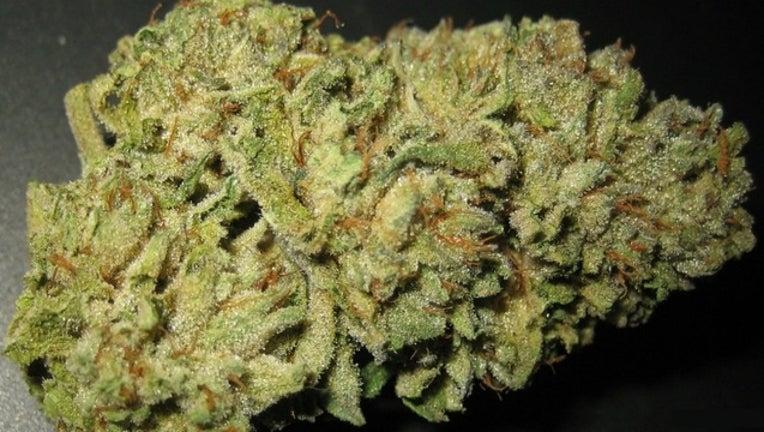 pot-marijuana-weed-404023.jpg
