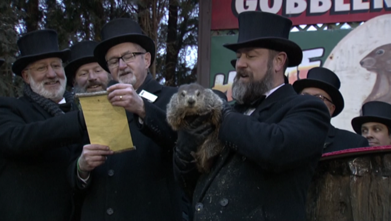 groundhog_day_forecast_020219_1549112981813-401096.PNG