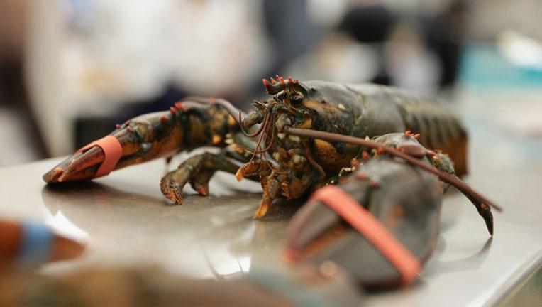 d8df21b9-GETTY Lobster 091918-401720