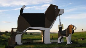 'Ruff' day? Book a relaxing stay at this giant beagle-shaped bed & breakfast