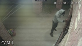 Suspect wanted for vandalizing several Southeast Oak Cliff churches