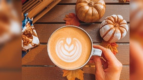 Pumpkin spice favored over chocolate by nearly half of Americans, study finds