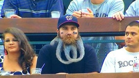 "Washington Nationals super fan sports wild ""W"" beard in support of his hometown team"