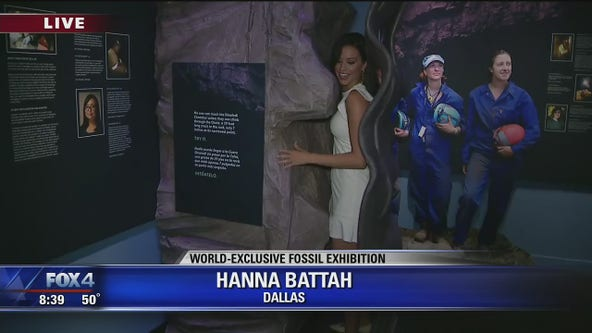 Human origins fossil exhibit opens at Perot Museum