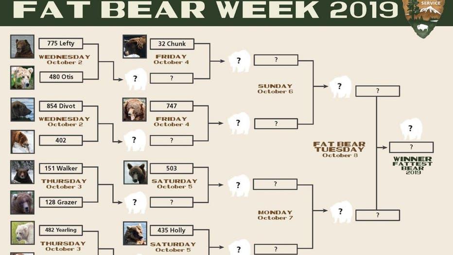 fat-bear-chart.jpg