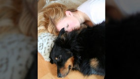 Women sleep better with dogs by their side, study says