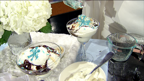 The Cold Never Bothered Me Anyway Hot Fudge Sundae