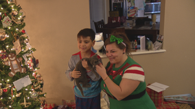 'Pawler Express' surprises Grand Prairie family with a cat for Christmas