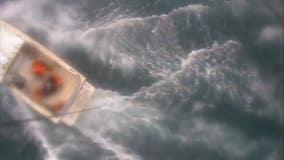 Shark reportedly bites surfer off coast of Santa Barbara