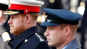Prince William and Prince Harry issue joint statement amid UK royal family rift