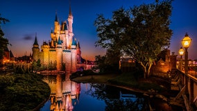 Travel agency looks to hire 'theme park tester' to visit Florida's theme parks including Disney, Universal