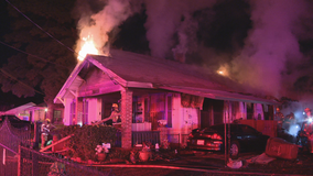 Elderly woman and her dog die in Dallas house fire