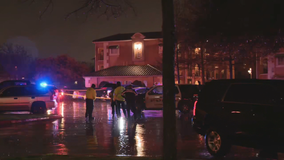 Man with knife killed by officers in Grand Prairie