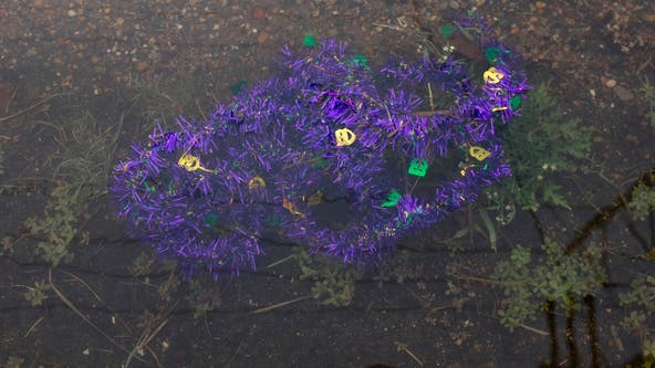 2nd person in days killed by Mardi Gras float in New Orleans