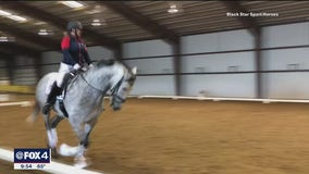 Fox4ward:  Free Horse Shows in Rockwall