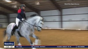 Fox4ward:   Showcasing The Beauty of Horses