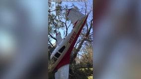 2 men, dog escape Florida plane crash unharmed