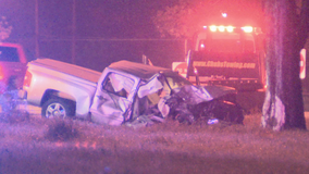 Driver killed after vehicle go off I-30, hits tree in East Dallas