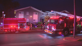 Firefighters save residents, pets in Dallas apartment fire