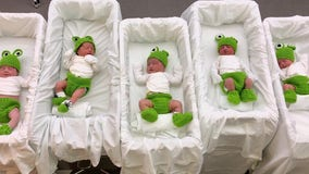 Florida hospital welcomes Leap Day babies with hand-knitted frog costumes