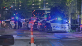 Driver in stolen vehicle leads police on chase, before crashing in Downtown Dallas