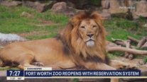 Fort Worth Zoo reopens with reservation system