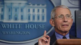 Fauci warns of 'suffering and death' if US reopens too soon