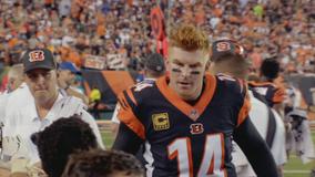 Cowboys add Andy Dalton as Prescott's backup