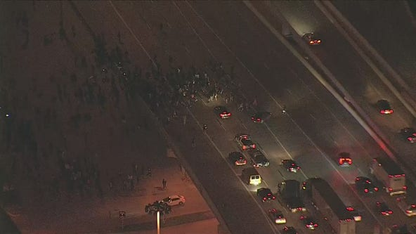 Group of protesters block freeway traffic