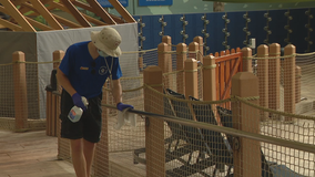 Families happily return to Great Wolf Lodge as resorts take COVID-19 precautions