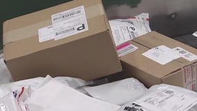 Texas Ag Commissioner warns Texans about unsolicited seed packets from China