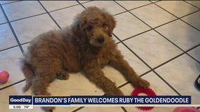 Brandon's New Puppy