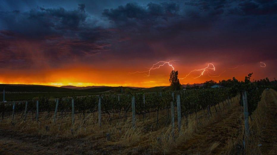 lightning-6.jpg