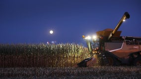 Michigan hunter, 14, killed when run over by corn harvester