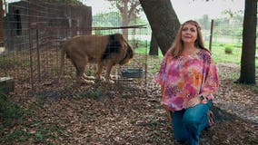 Big Cat Rescue CEO Carole Baskin joining cast of 'Dancing with the Stars'