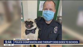 Southlake officer and his pal Pugsley helping students in schools