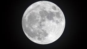 NASA says water has been spotted on the sunlit surface of the moon