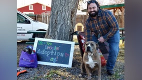 'Drools' the dog finds loving home after spending 729 days in shelter