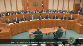CEO tells Texas lawmakers ERCOT did not respond to warning signs with 'enough urgency'