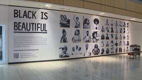 Art exhibit at Galleria Dallas celebrates Black beauty