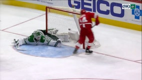 Fabbri scores, Bernier hurt in Red Wings' 3-2 win over Stars