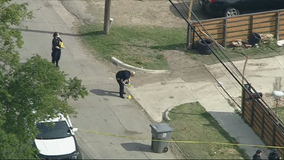 Dallas officer shoots dog dead after 911 call about attempted attack on child